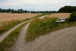 Offene Landschaften prägen das Bild entlang der Route nördlich von Ahrensfelde. (Foto: Jörg Levermann)